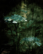 Teal Mixed Media - In the Still of the Night by Bonnie Bruno