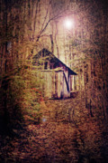 Shack Digital Art Prints - In the Sugar Bush Print by Nancy  Coelho
