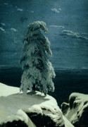 Moonlight Painting Prints - In the Wild North Print by Ivan Ivanovich Shishkin