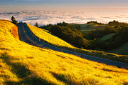 Golden Gate National Recreation Area Photos - In this Life by Bernard Chen