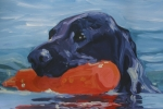 Retrievers Paintings - In Training by Sheila Wedegis