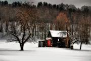 Barn Digital Art - In Winter by Lois Bryan