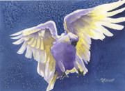 Cockatoo Originals - Incoming by Marsha Elliott