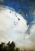Flying Wild Bird Prints - Incoming Storm And Flock Of Birds Print by Susan Gary