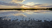 Salt Marsh Posters - Incoming Tide Sunrise Reflection Poster by Dustin K Ryan