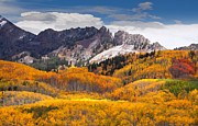 Crested Butte Framed Prints - Incredible Fall Beauty Framed Print by Tim Reaves