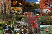 Birch River Prints - Incredible New England Fall Foliage Photography Print by Juergen Roth