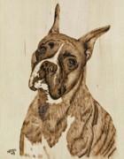 Pets Pyrography - Indi by Nedra  Denison