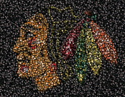 Autographed Art - Indian Hockey Puck Mosaic by Paul Van Scott