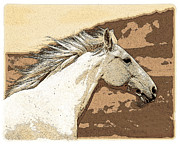 Brown Tones Photos - Indian Horse by Steve McKinzie