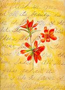 Linda Pope Posters - Indian Paintbrushes Poster by Linda Pope