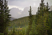 All-metal Photos - Indian Peaks Colorado Rocky Mountain Rainy View by James Bo Insogna