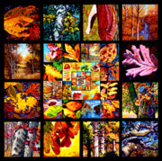 Fall Trees Posters - Indian Summer Poster by John Lautermilch