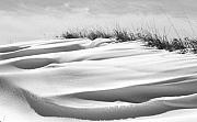 Fine Art Photograph Art - Indiana Snow by Michael L Kimble