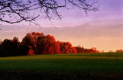 Diane Merkle Prints - Indiana Sunset Print by Diane Merkle