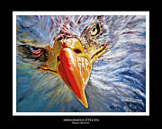 Patriotism Painting Posters - Indigenous Eyecon - Bald Eagle on Black Poster by Donna Proctor