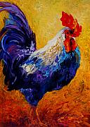 Farm Rooster Painting Framed Prints - Indy - Rooster Framed Print by Marion Rose