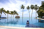 Asia Metal Prints - Infinity pool Meeru Metal Print by Jane Rix