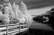 Glencoe Photos - Infrared Glencoe Lochan by Billy Currie Photography