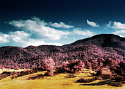 Corn Prints - Infrared Troodos Mountains Print by Stylianos Kleanthous