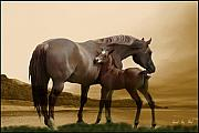 Foal Paintings - Inherit the Wind by Corey Ford