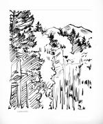 Rocky Drawings Prints - Ink Sketch of Rocky Mountains Print by John Lautermilch
