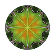 Mandala Photos - Inner Luck by Ken Fields