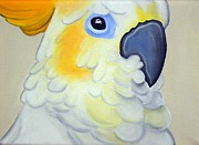 Parrot Print Paintings - Innocence by Una  Miller