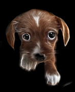 Puppy Digital Art - Innocent Loving Eyes	 by Peter Piatt