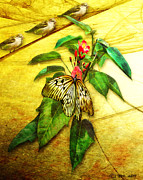 Insect - Butterfly - Sparrow - Happy Summer  Print by Yvon -aka- Yanieck  Mariani