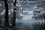 Infrared Photos - Inside by Mike Irwin