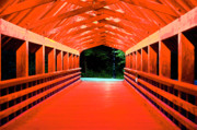 Architecture Digital Art Originals - Inside Rebagliati Park Bridge at Night by Frank Feliciano