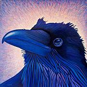 Raven Framed Prints - Inspiration Framed Print by Brian  Commerford
