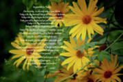 Prose Posters - Inspiration for Today Floral Poster by Cathy  Beharriell