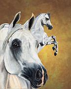 Arabian Horse Metal Prints - Inspiration Metal Print by Kristen Wesch