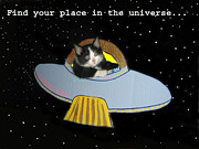 Flying Saucer Digital Art - Inspirational Words from Teddy the Ninja Cat by Reb Frost