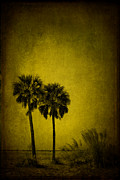 Siesta Key Prints - Integrity Of The Sun Print by Evelina Kremsdorf
