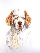 Father Christmas Originals - Intent - Clumber Spaniel by Jan Irving