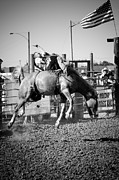 Riding Photos - Interior South Dakota Rodeo by Rick Rowland