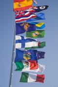Flagpole Photos - International Flags On A Flagpole by Sean White