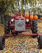 Red Tractors Posters - International Harvester McCormick Farmall Cub Farm Tractor . 7D10305 Poster by Wingsdomain Art and Photography