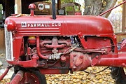 Red Tractors Posters - International Harvester McCormick Farmall Cub Farm Tractor . 7D10310 Poster by Wingsdomain Art and Photography