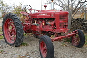 Brentwood Photos - International Harvester McCormick Farmall Farm Tractor . 7D10322 by Wingsdomain Art and Photography