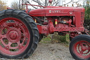 Backroad Prints - International Harvester McCormick Farmall Farm Tractor . 7D10323 Print by Wingsdomain Art and Photography