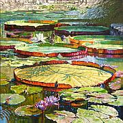 Water Lilies Paintings - Interwoven Beauty by John Lautermilch