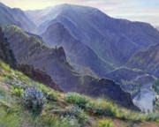 Salmon River Idaho Paintings - Intimate Grandeur by Steve Spencer