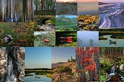 Autumn Photos Prints - Intimate New England Landscape Photography Print by Juergen Roth