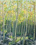 Yellow Leaves Pastels Prints - Into the Aspens Print by Mary Benke