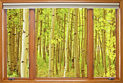 Gold Art - Into the Aspens Window View by James Bo Insogna