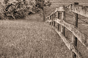 Barbed Wire Fences Photo Prints - Into the Distance BW Print by JC Findley